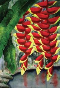 heliconia, pisang hias, pisang-pisangan, tanaman hias, pertanian, hortikultura